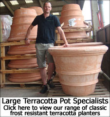 Large terracotta pots and planters - pictured her is an extra large frost-proof terracotta Florentine garden pot