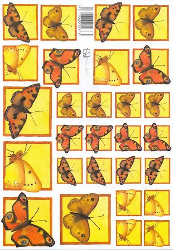 Marjoleine vlinder.jpg