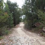 Elvina Track near West Head Rd. (90555)