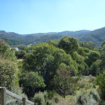 Looking across the Thredbo valley from the Pipeline Path (277313)
