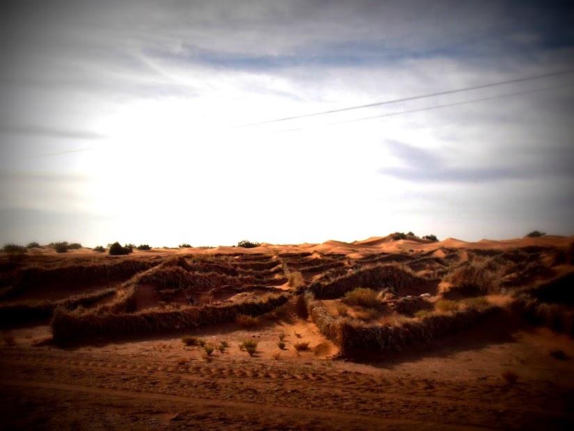 Marrocos e Mauritãnia a Queimar Pneu e Gasolina - Página 13 DSCF1458