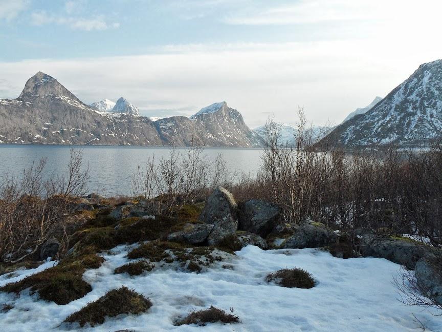 Norvège mars 2014 SAM_1229