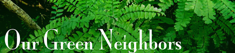Our Green Neighbors