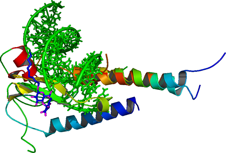 Figure:1_Crystal Structure Of Glucagon-Like Peptide-1 In Complex With The Extracellular Domain Of The Glucagon-Like Peptide-1 Receptor_Figure:3 & 4