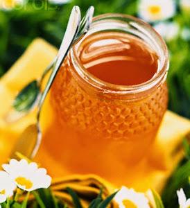 Mật ong, món quà từ thiên nhiên