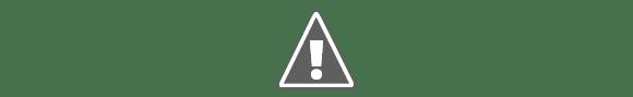 Blogul lui Dan