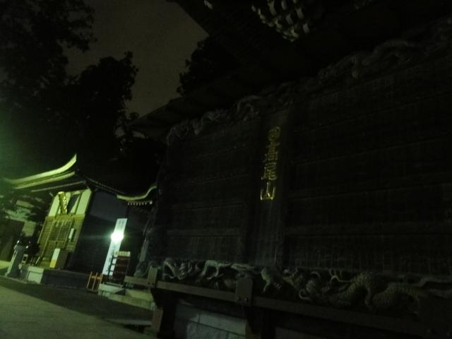 高尾山 薬王院