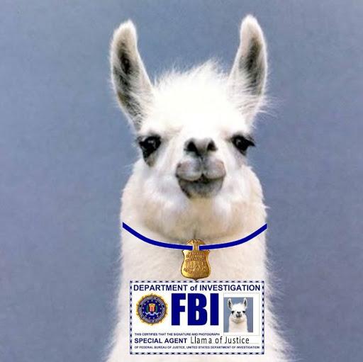 aria is a llama