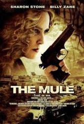 The Mule - Chạy trốn ngoài biên giới