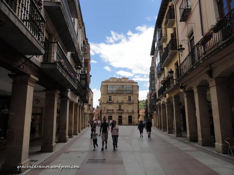 espanha - Passeando pelo norte de Espanha - A Crónica - Página 3 DSC05138