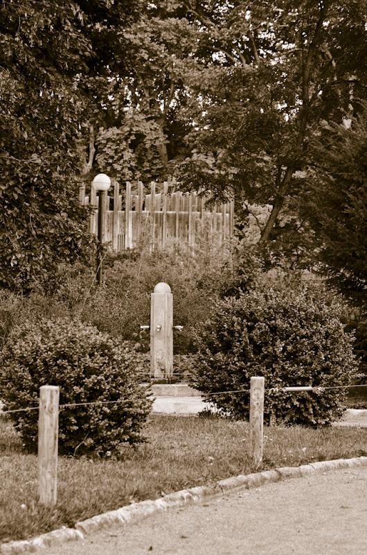 une fontaine, 2 arbustes, 3 traitements... 20110723_06_fontaine_DSC0324