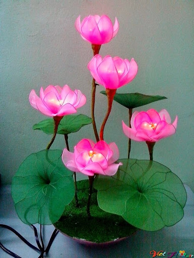 mẫu hoa sen bằng vải voan 4