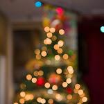 MSBCA Christmas 2012