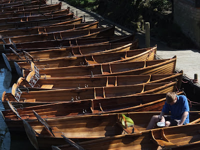 Rowing Boats at Dedham