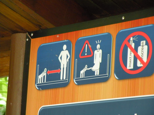 Warning monkeys