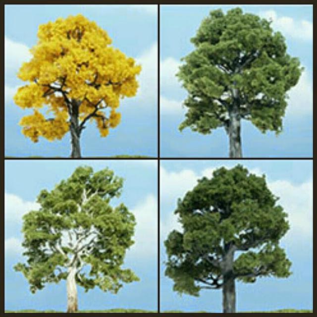 árboles Premium 1 unidad woodlandscenics