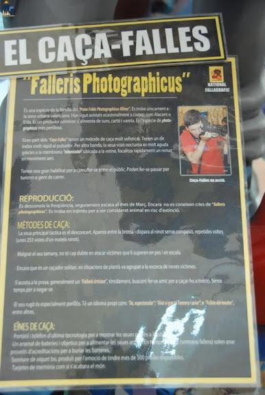 """Avistado un """"Caça-Falles"""" en la exposición del Ninot 2012"""