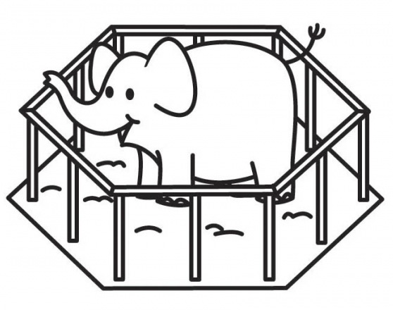 Elephant in the zoo coloring pages