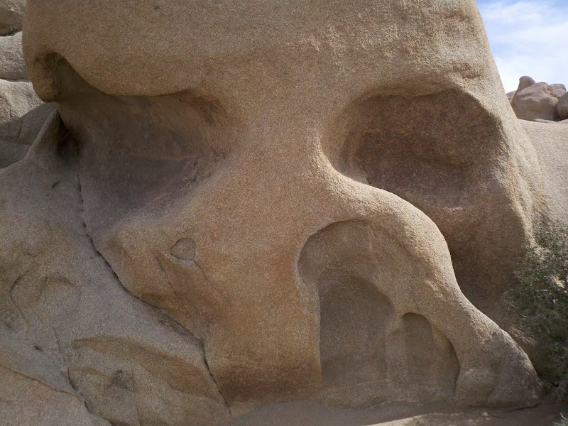 Joshua Tree National Park • Skull Rock