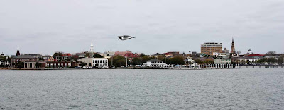 View of Charleston from the Harbor by SweeterThanSweets