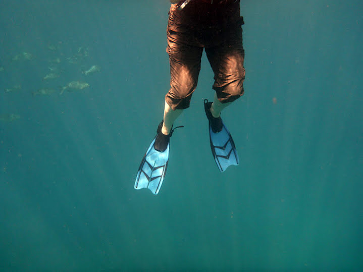 Snorkelling off Makena Beach. Fish in the background