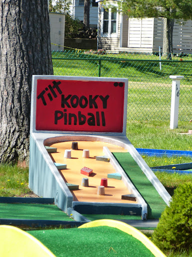 Port Austin's Kooky Golf Pinball. From Oddball Michigan: A Guide to 450 Really Strange Places