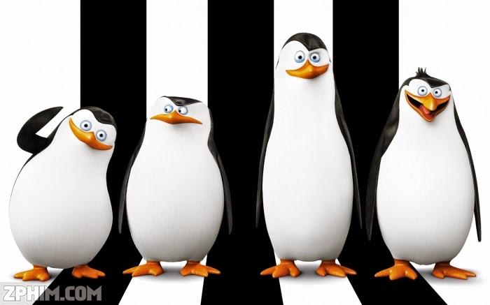 Ảnh trong phim Biệt Đội Cánh Cụt Vùng Madagascar - Penguins of Madagascar 2
