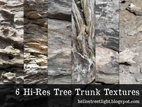 Free Hi-Res Tree Trunk Textures