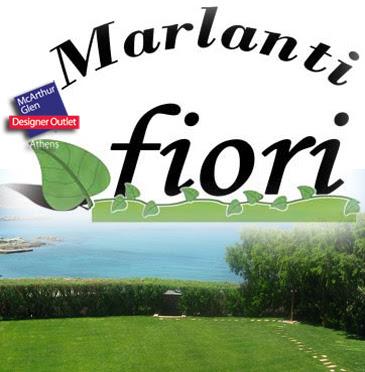 www.fitotechniki.gr