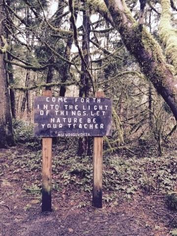 Wallace Falls Hike