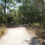 Forested track intersection in Green Point Reserve  (402859)