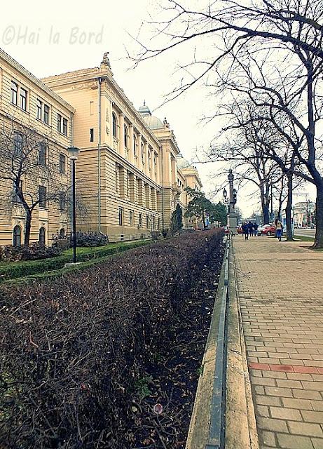 universitatea iasi februarie 2013