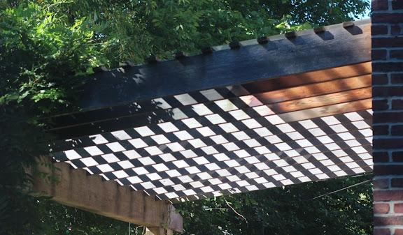 interesting shadows made by a backyard trellis