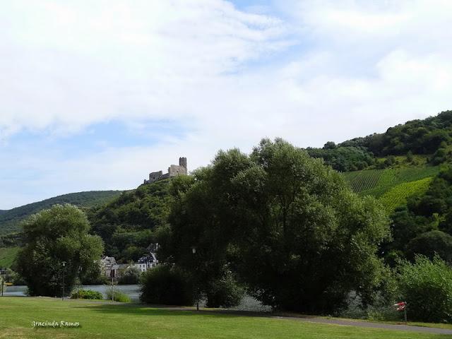 passeando - Passeando pela Suíça - 2012 - Página 21 DSC08323