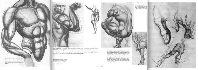 """Diseño arturo: Libro de Burne Hogarth """"El dibujo de la"""