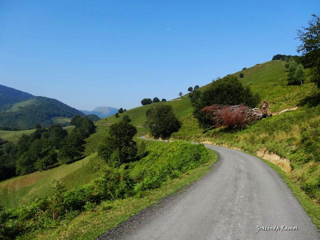 passeando - Passeando pela Suíça - 2012 - Página 27 DSC03474
