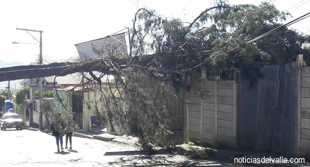 Fuertes vientos afectan a la región