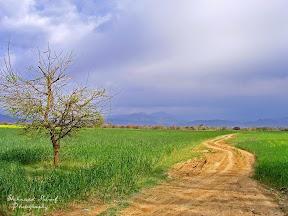 Haripur, Khyber Pakhtunkhwa, Pakistan