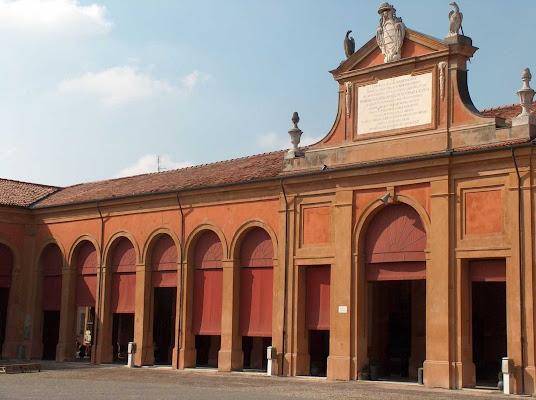 Erboristeria Clorofilla snc, Piazza Mazzini, 70, 48022 Lugo RA, Italy