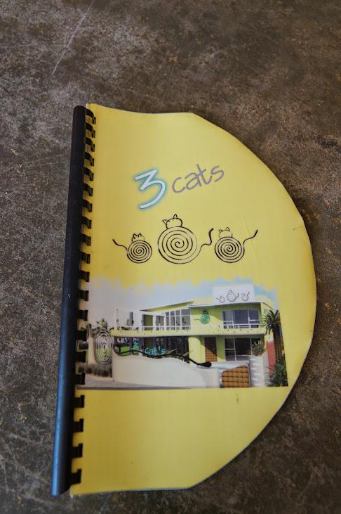 宜蘭食記-異國特色咖啡館【三隻貓3CATS】