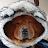 Wendy Uriostegui avatar image