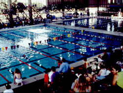 Bored Of The Gym Try The Long Beach Belmont Pool