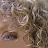 Sue Berk Koch avatar image
