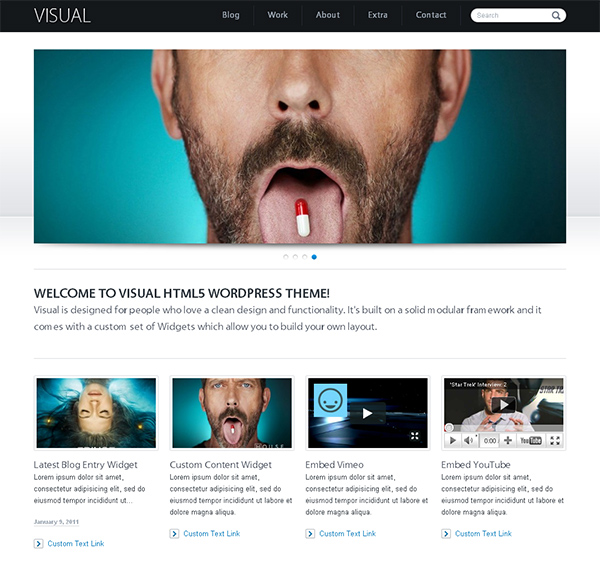 Visual Flexible WordPress Theme
