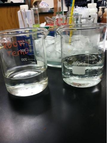 diffusion of potassium permanganate in water lab