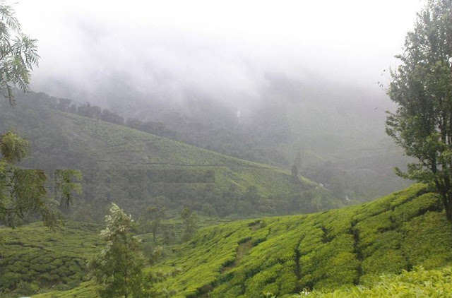 Snaps from Idukki part two 7