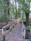 Bridge along Eagle Trail