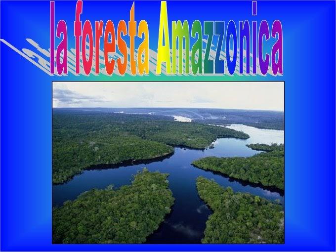 fuoriclasse  la foresta amazzonica