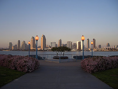 View of the San Diego skyline from Coronado Island, near where the ferries are