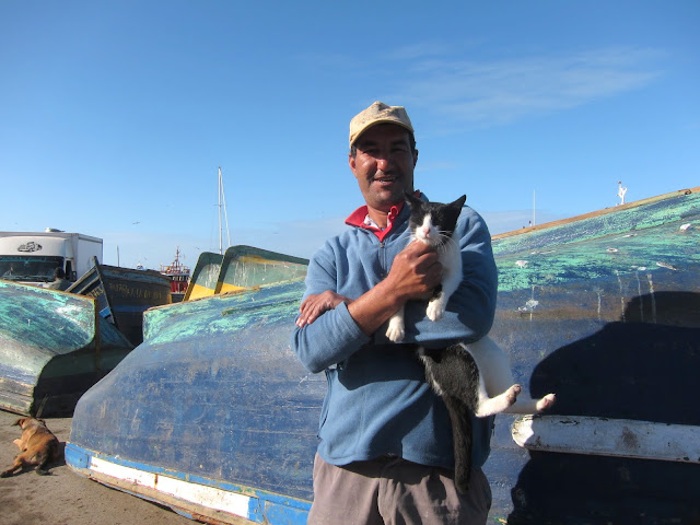 Essaouira fisherman and one of the street cats